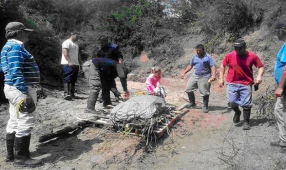 Argentina: Hallan restos fósiles de un glyptodontidae