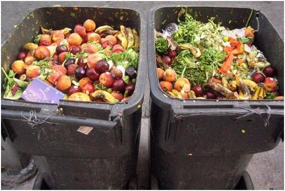 Los 10 países que tiran más comida a la basura