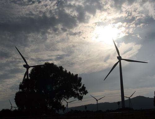 Industria reducirá las primas de la eólica un 35%