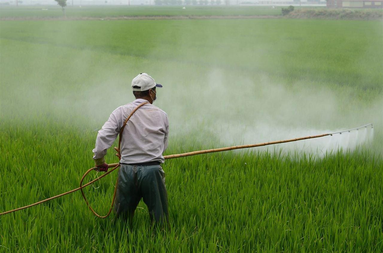 Un 'software' analiza los efectos de la exposición a pesticidas