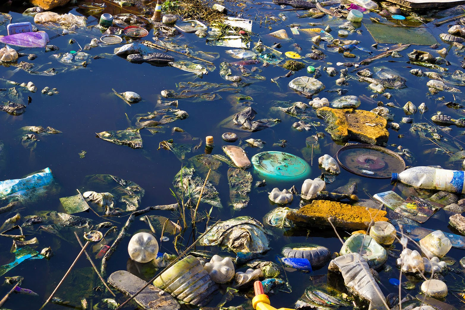 ECOticias se adhiere al Día Mundial del Reciclaje