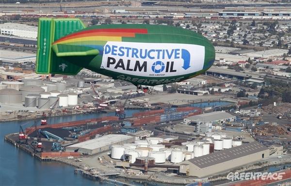 ¿Dónde acaba el palma procedente de la deforestación?