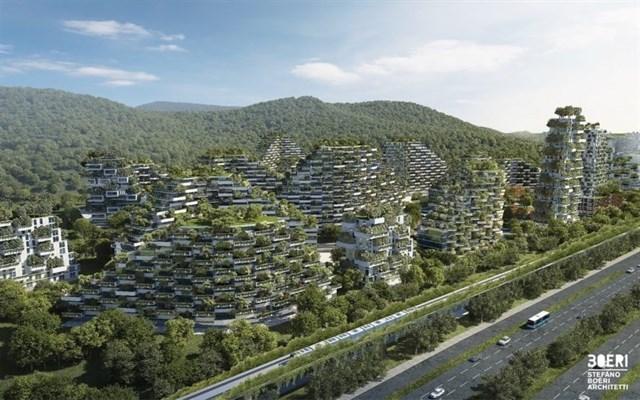 En China quieren combatir la contaminación construyendo una ciudad pulmón con 40.000 árboles