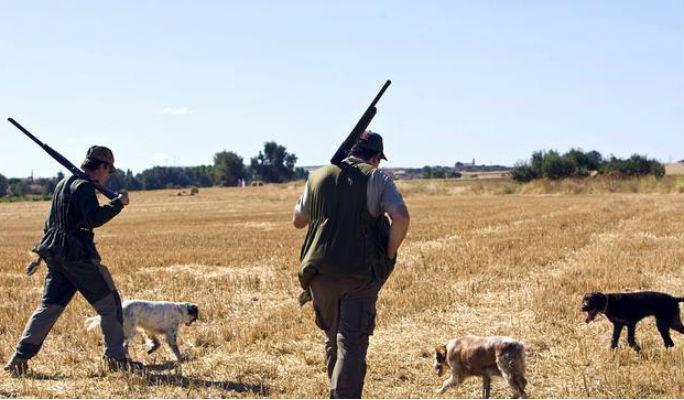 El 'infierno' de los cotos intensivos de Castilla-La Mancha