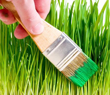 RÍO+20, un 'greenwashing' en toda regla