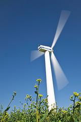 Endesa tiene dudas sobre las renovables