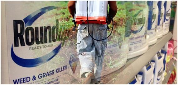 Glifosato y Monsanto: los quiere la Bayer pero no la UE