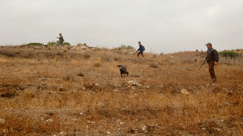 El encuentro de cazadores que se va a celebrar en Bardenas es inadmisible