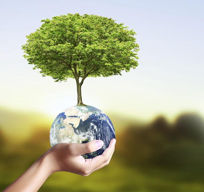 Ecoembes y SEO/BirdLife convocan 50 ayudas de 1.500 euros para conservar el medio ambiente