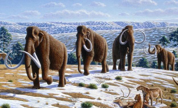 La humedad, factor 'clave' en la extinción de la megafauna de la Edad de Hielo