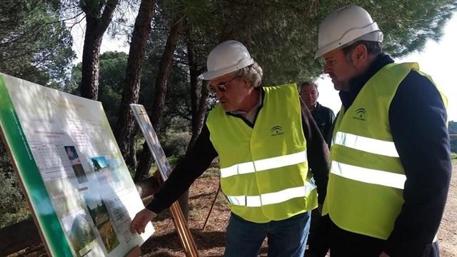 Tratamientos preventivos en los montes públicos de Córdoba