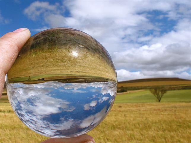 El Día del Medio Ambiente en 10 frases celebres