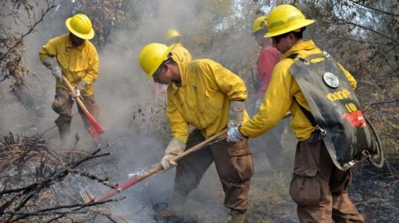 Incendios forestales en Chile: Declararon alerta amarilla en Valparaíso y el Maule