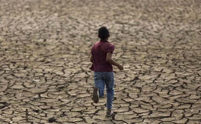 La OCDE alerta de que la demanda de agua a nivel mundial aumentará en un 50 por ciento para 2050