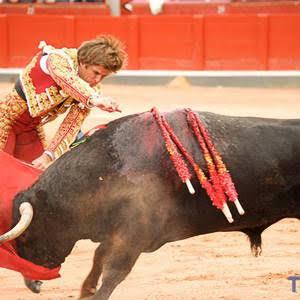 En Galicia quieren que la Ley de Bienestar Animal incluya el veto a las corridas de toros