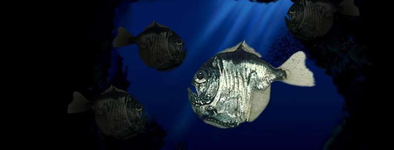Un viaje científico al fondo del golfo de México