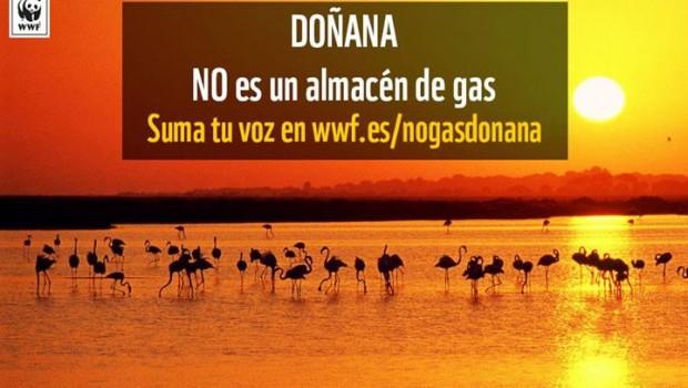 Gas Natural 'empecinada' en quitar hierro al almacén de gas en Doñana