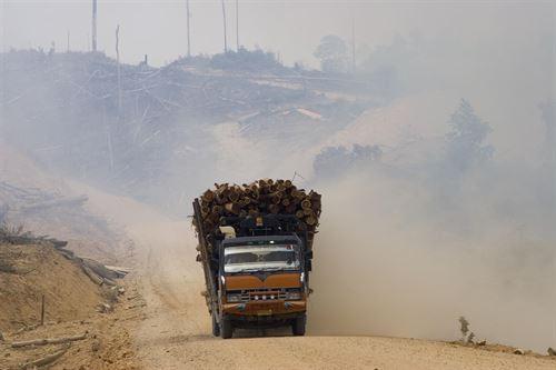 El planeta ha agotado su 'presupuesto ecológico' para 2014