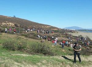 Preparativos para la 2ª repoblación en Sierra Carbonera