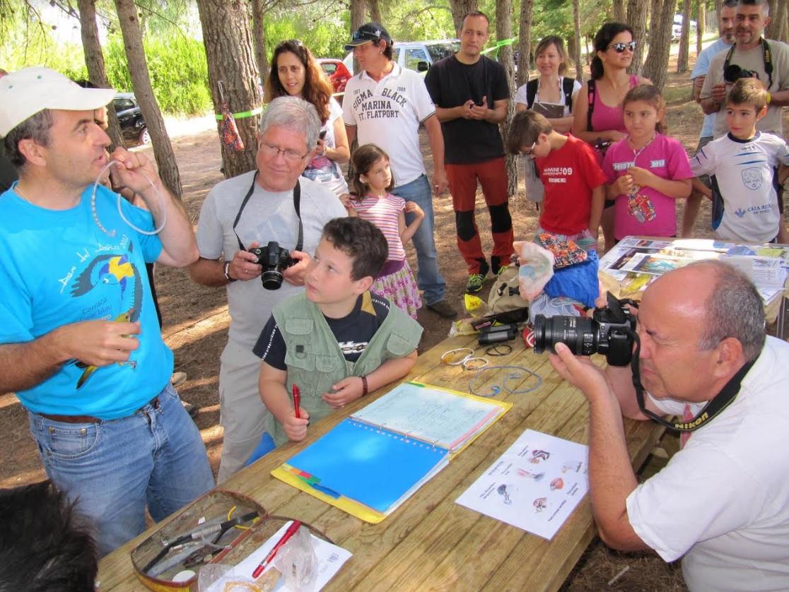 Avifauna en Tierras Altas de Soria: Avistamiento y anillamiento de pájaros