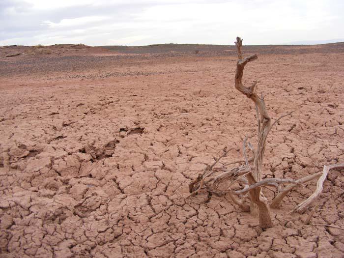 El 30% de la superficie española es crítica en materia de agua por el cambio climático