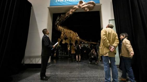 El Patagotitán fue considerado el más grande de todas las especies