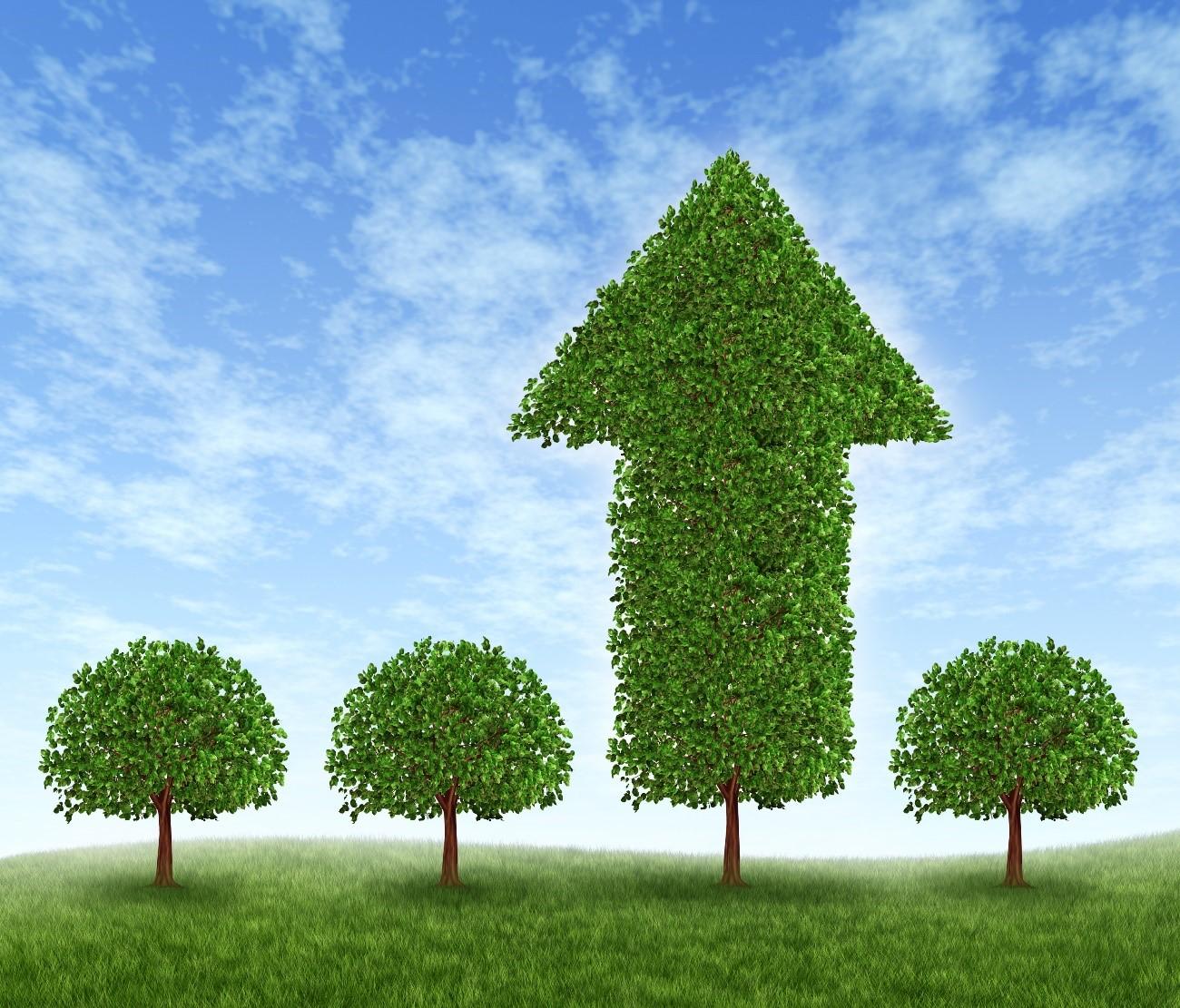 Cuatro insólitas tecnologías verdes