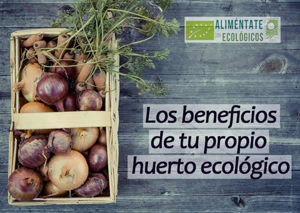 Ventajas de cultivar tu propio huerto ecológico