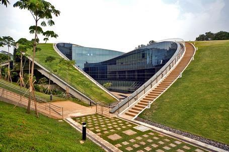 El CEBAS y la UPCT desarrollan un proyecto sobre cubiertas vegetales para edificios