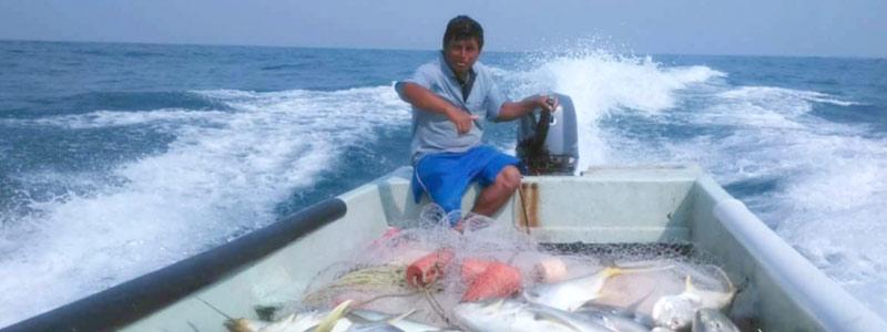 Conoce al oceanólogo contra especies invasoras mexicano