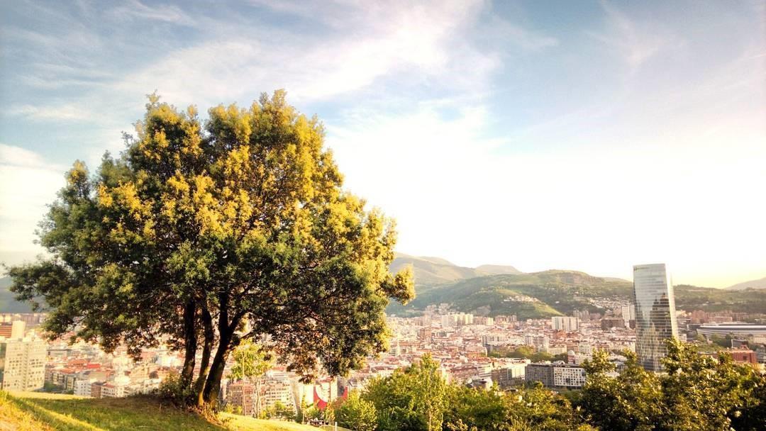 Las ciudades españolas y la revolución de la energía 'verde'
