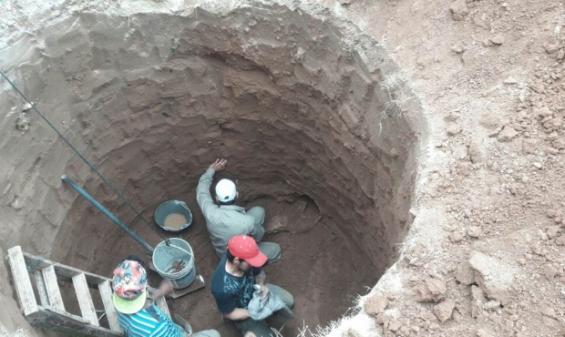 Argentina. Habrían hallado restos de un gliptodonte en Santiago del Estero