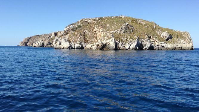 Las Islas Malgrats se mantienen libres de ratas