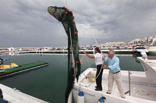 Recuperan el cadáver de un cetáceo de 500 kilos varado en la playa de Puerto Banús en Marbella (Málaga)