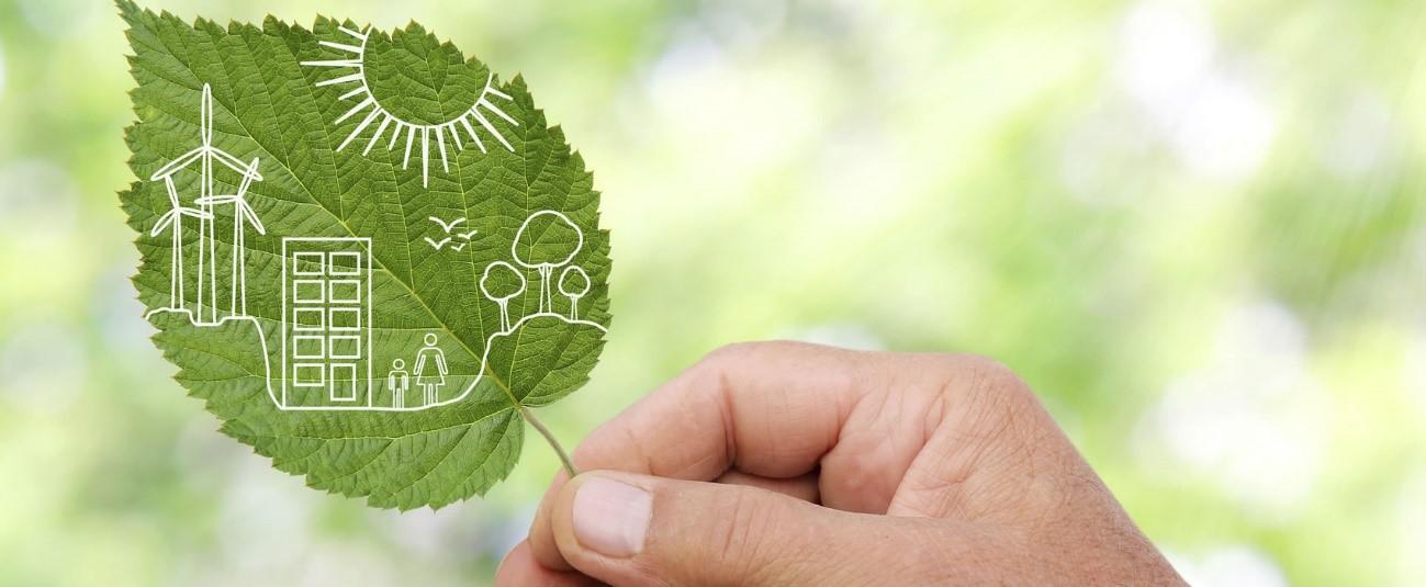 3 innovaciones que cuidan al Medio Ambiente