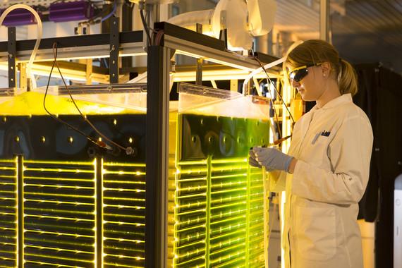 Bioeconomía, el presente y futuro más sostenible