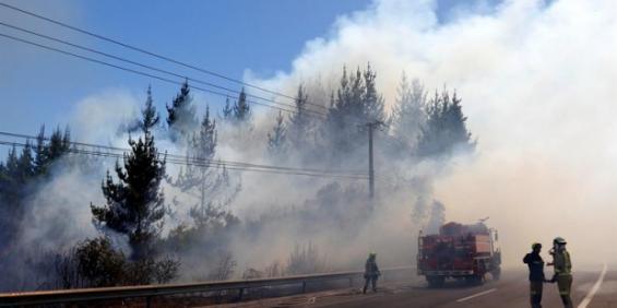 Chile. Alerta roja por incendios en Viña del mar y Valparaíso
