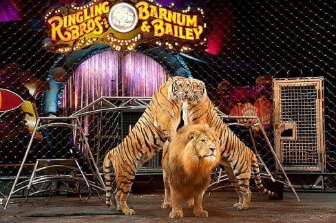 El circo Ringling cierra para siempre por el rechazo social