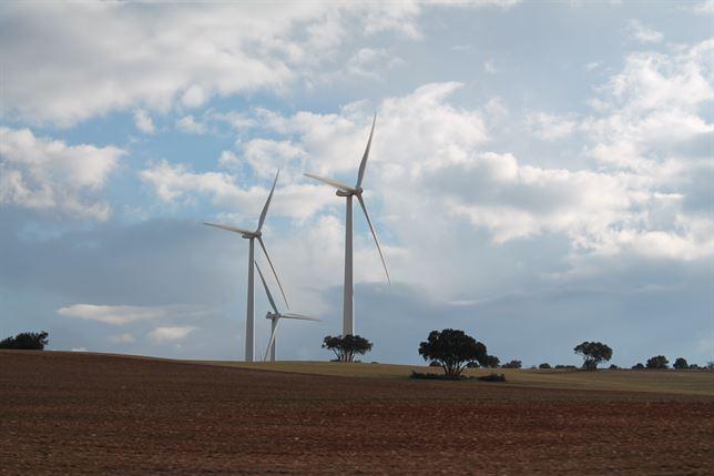 Las energías renovables ahorrarán 50.000 millones a España