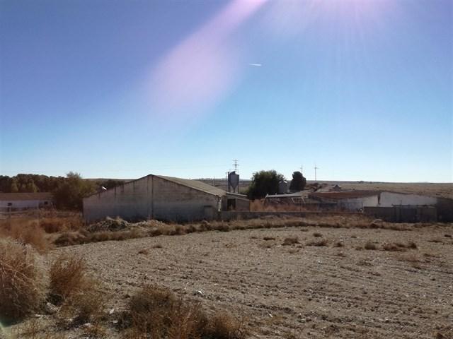 Vecinos se oponen a la reapertura de una granja de cerdos