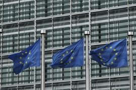 La Eurocámara pide que la absorción de CO2 supere a las emisiones en los países de la UE en 2030