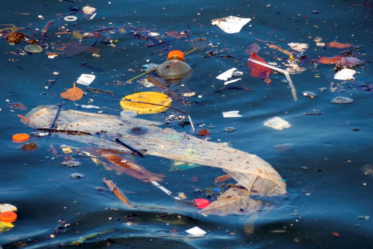 Innovadoras tecnologías verdes para limpiar los Mares Báltico y Mediterráneo