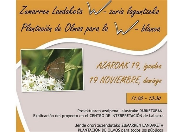 Plantación de olmos en el parque de Valderejo para proteger a la mariposa W-Blanca
