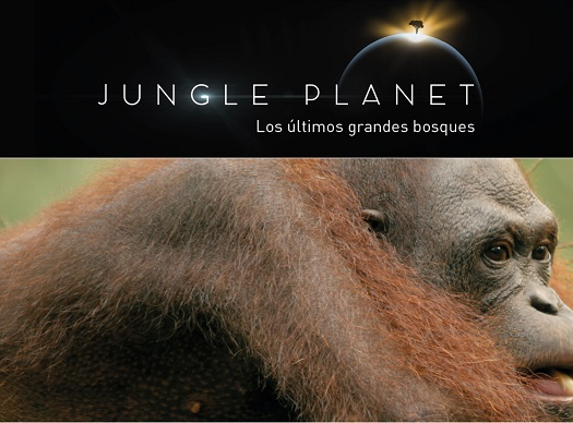 'Planeta selva' ('Jungle planet'), la serie documental más esperada (Vea VIDEO)