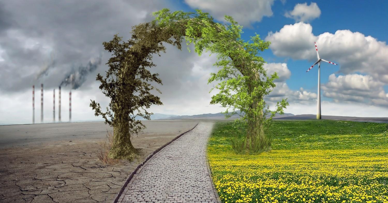 Cuestionario para la ley de cambio climático olvida preguntas para la descarbonización