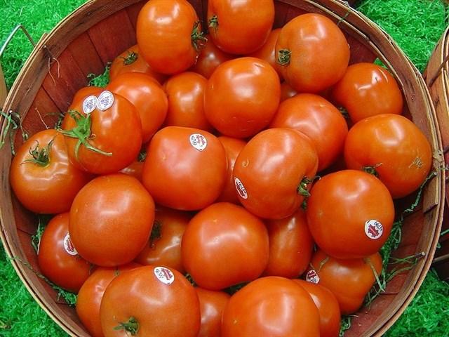 Comer solo un tomate aporta alrededor del 40% del requerimiento diario de vitamina C