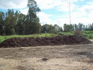 Reutilizar los residuos de la industria aceitera como abono ahorraría 60 millones de euros al año