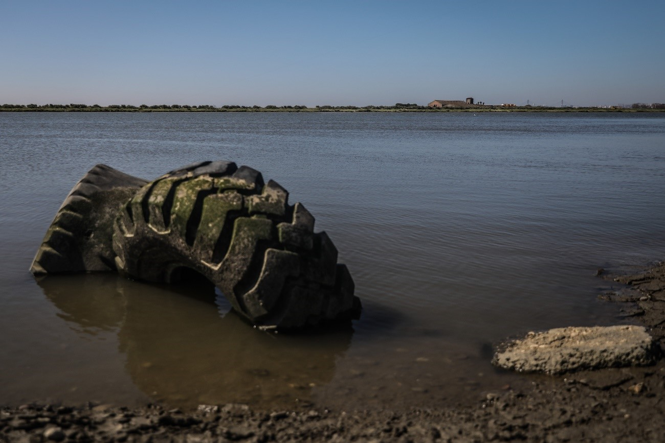 El Tajo: un río que se muere inexorablemente