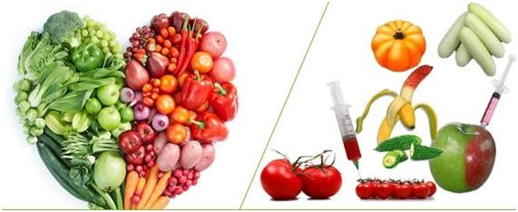 ¿Alimentación ecológica o alimentación convencional?
