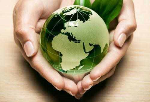 Novedad: Master en Gestión del Medio Ambiente: sostenibilidad, sistemas e impacto ambiental